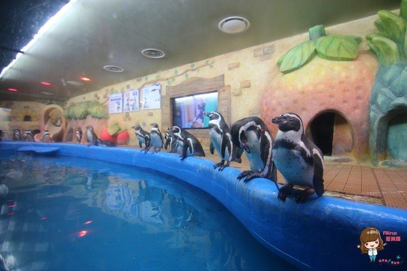 COEX水族館