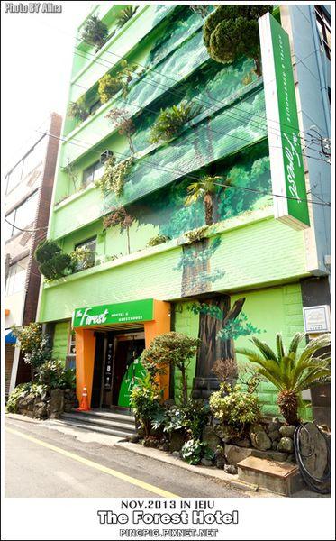 [ 濟州島自由行 ] 韓國 The Forest Hotel – 背包客最愛青年旅館 鄰近中央地下街.黑豬肉一條街 @Alina 愛琳娜 嗑美食瘋旅遊