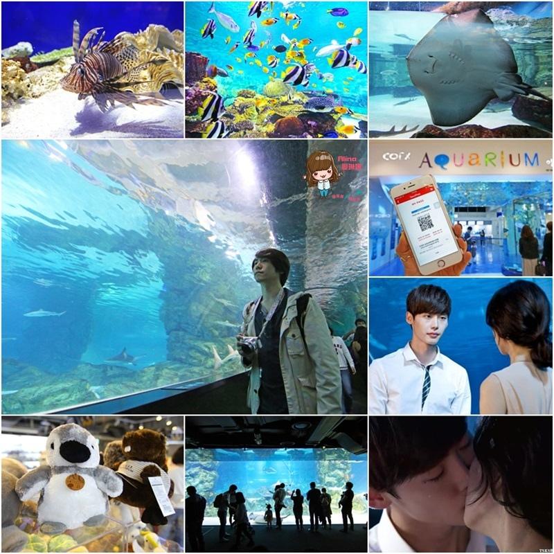 【首爾景點】三成 COEX水族館 AQUARIUM-韓劇聽見你的聲音 @Alina 愛琳娜 嗑美食瘋旅遊