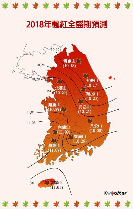 【韓國自由行】全羅南道 內藏山賞楓 瑰麗火紅楓葉 韓國美景 當地旅遊一日團交通