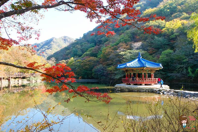 韓國賞楓景點推薦 內藏山