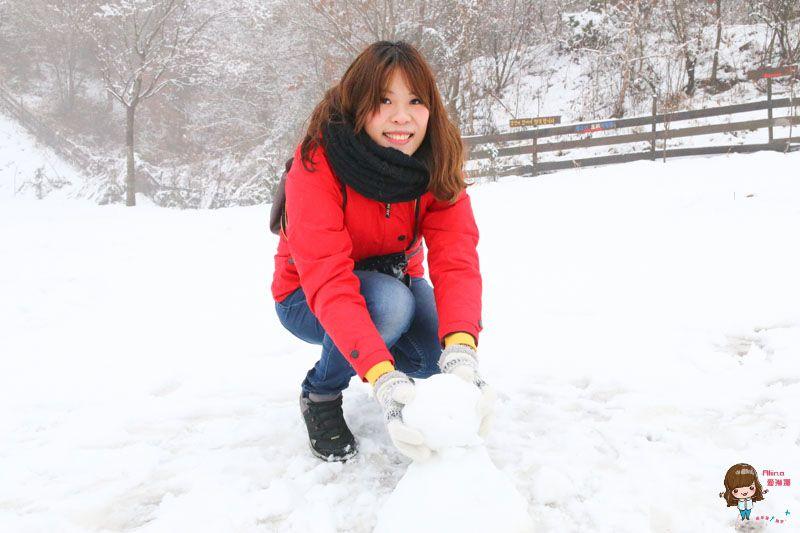 【冬天玩雪趣】韓國滑雪一日團 雪兜場滑雪好刺激 草莓農場現採現吃