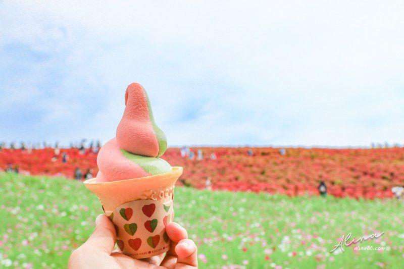掃帚草冰淇淋