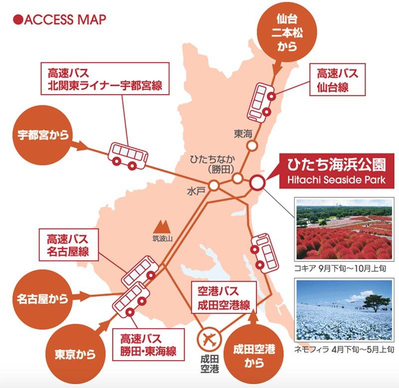 國營常陸海濱公園 東京往返茨城 高速巴士交通車路線