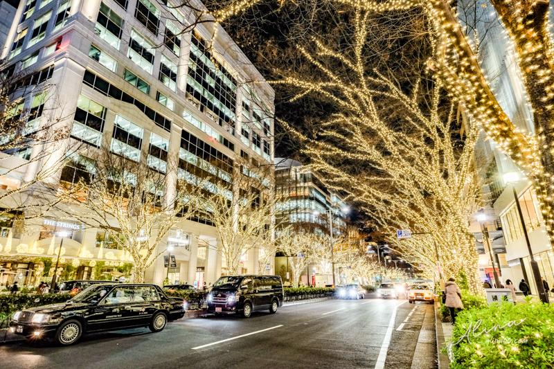 表參道 東京聖誕節點燈