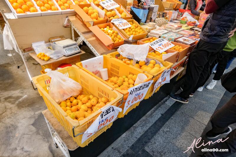 濟州島橘子