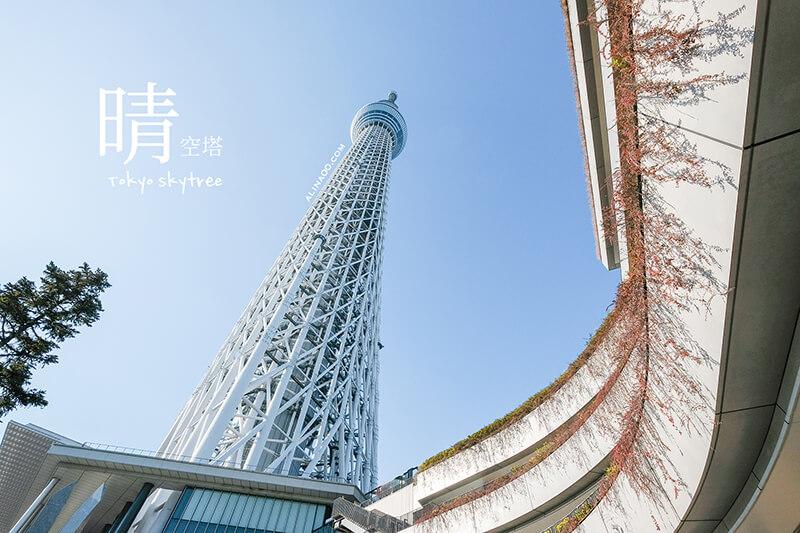 【東京景點】晴空塔 Tokyo Skytree 門票優惠+交通,免排隊快速入場 @Alina 愛琳娜 嗑美食瘋旅遊