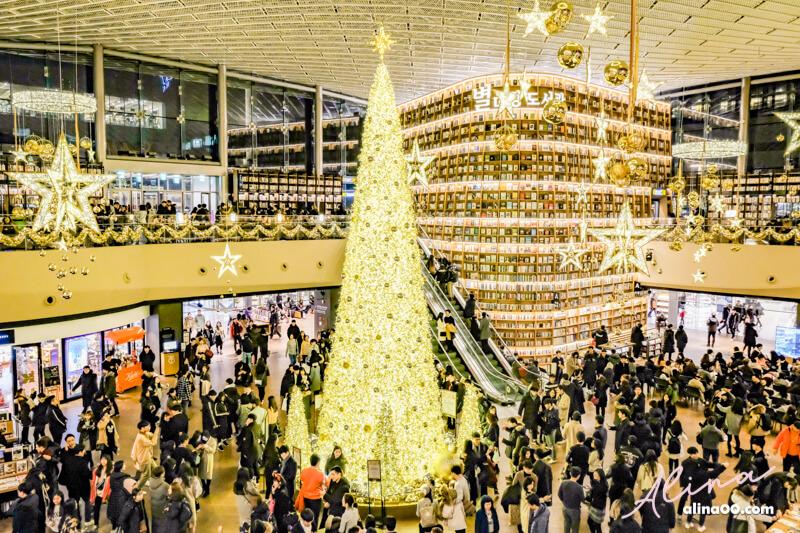星空圖書館聖誕樹