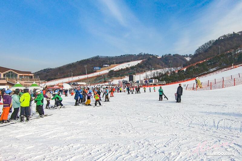 韓國江原道洪川大明滑雪場