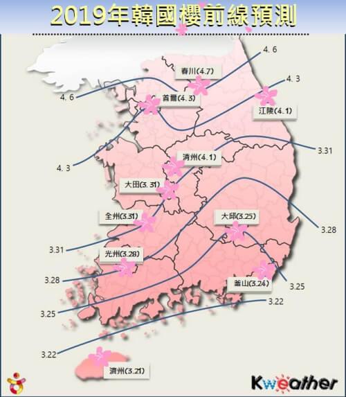 韓國 釜山櫻花 開花預測