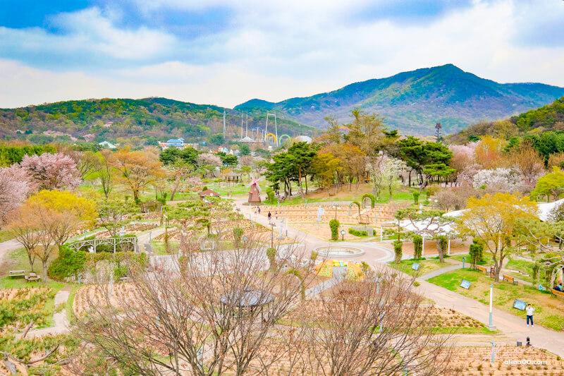 Thema Garden 首爾主題花園 玫瑰庭院 兒童動物園