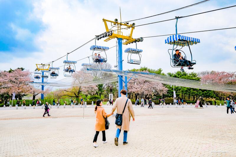首爾大公園纜車