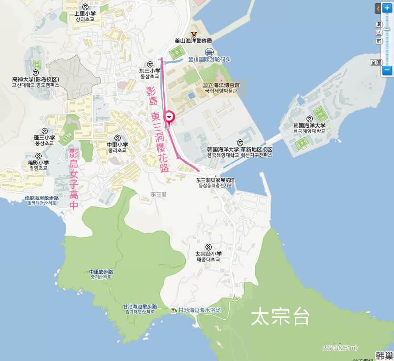 釜山櫻花 影島東三洞櫻花路