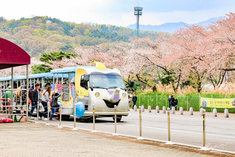 首爾大公園 遊園推薦 大象列車