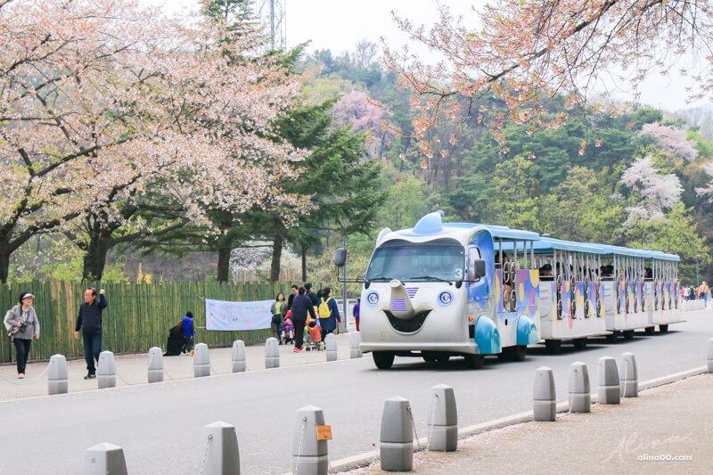 首爾大公園 遊園大象列車