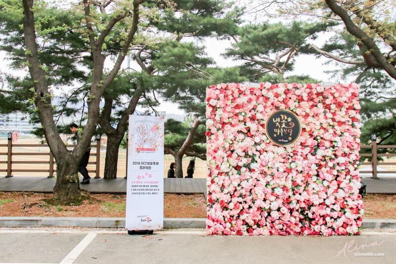 賽馬公園櫻花節