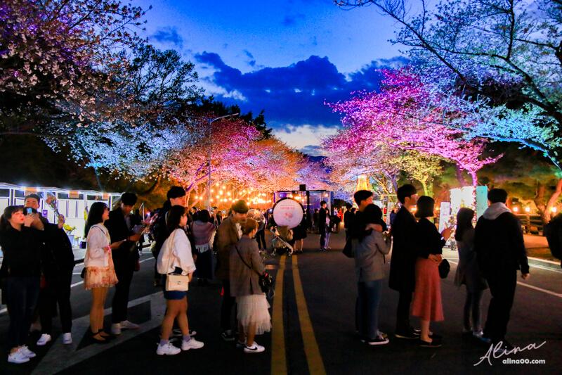 【首爾景點】京畿道 賽馬公園 櫻花慶典,Let's Run Park 夜櫻節 @Alina 愛琳娜 嗑美食瘋旅遊