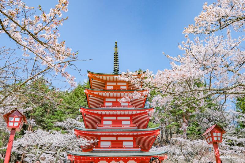 新倉山淺間公園 忠靈塔
