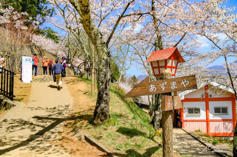 新倉山淺間公園