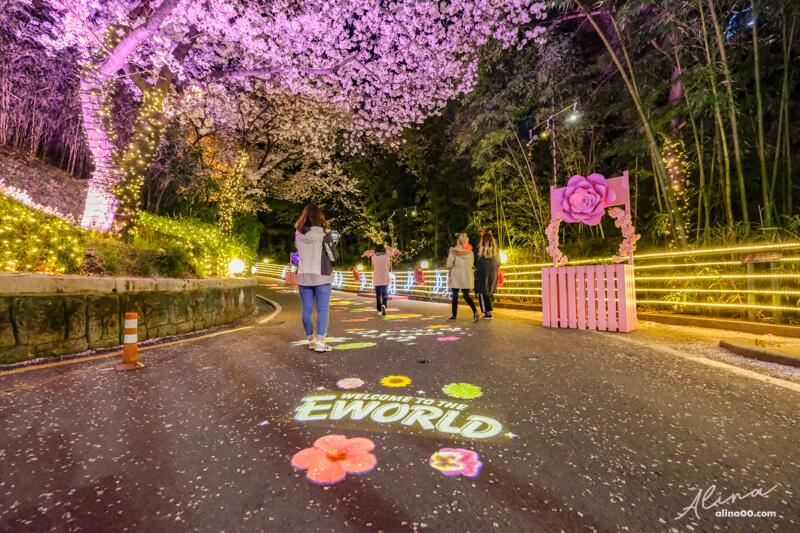 大邱 E-World 星光櫻花節