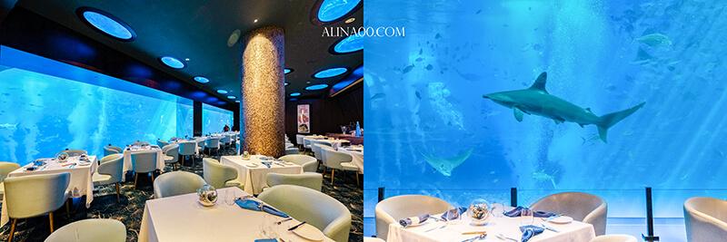 cean 海之味水族餐廳