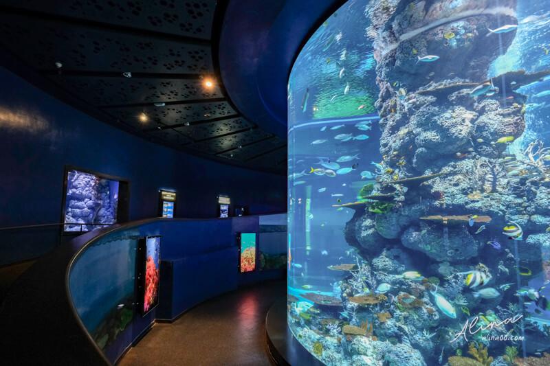 新加坡海遊館