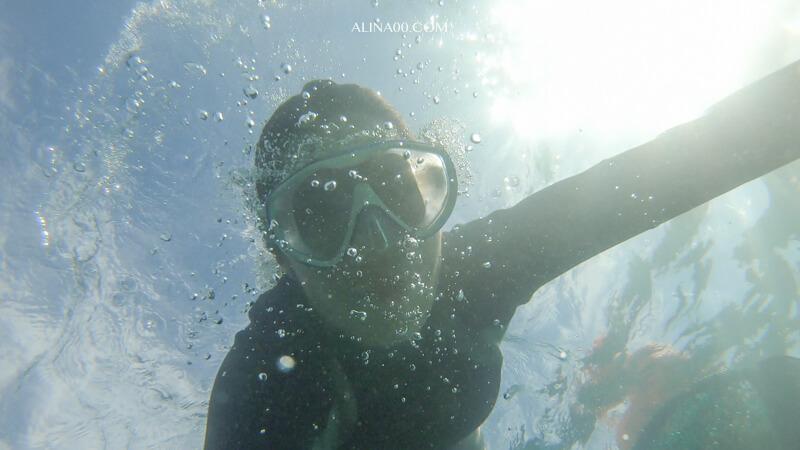 濟州島潛水