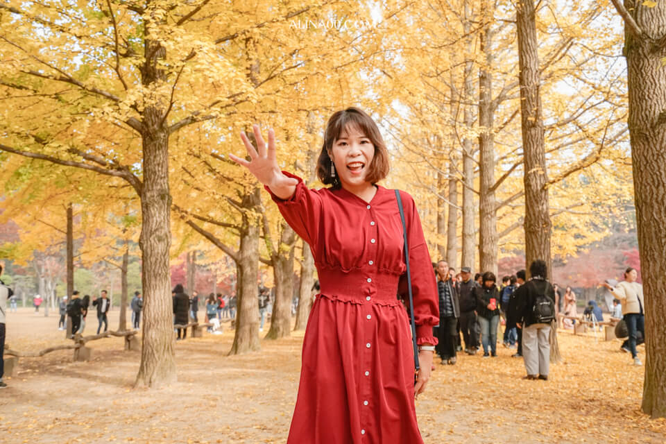 【韓國景點】京畿道 南怡島 一日遊|經典韓劇景點,首爾出發交通推薦 @Alina 愛琳娜 嗑美食瘋旅遊