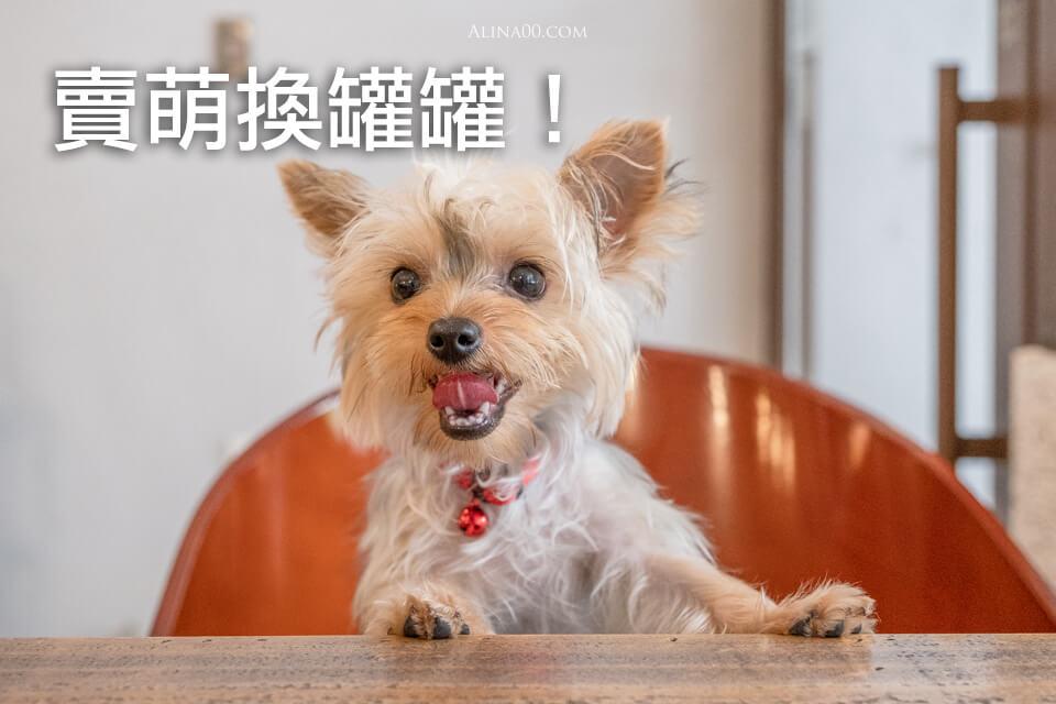 台北寵物友善餐廳