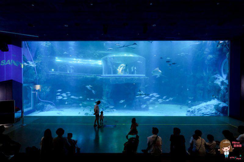 麗水水族館