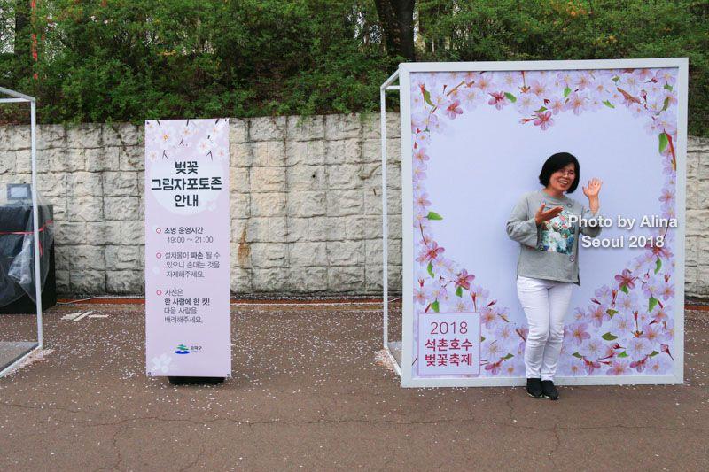 【首爾賞櫻景點】蠶室站 石村湖 櫻花節慶典-樂天世界.樂天塔盡收眼底