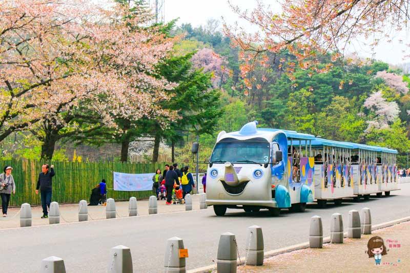 首爾景點 首爾大公園