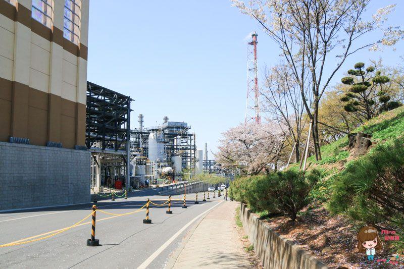 인천SK석유화학벚꽃동산