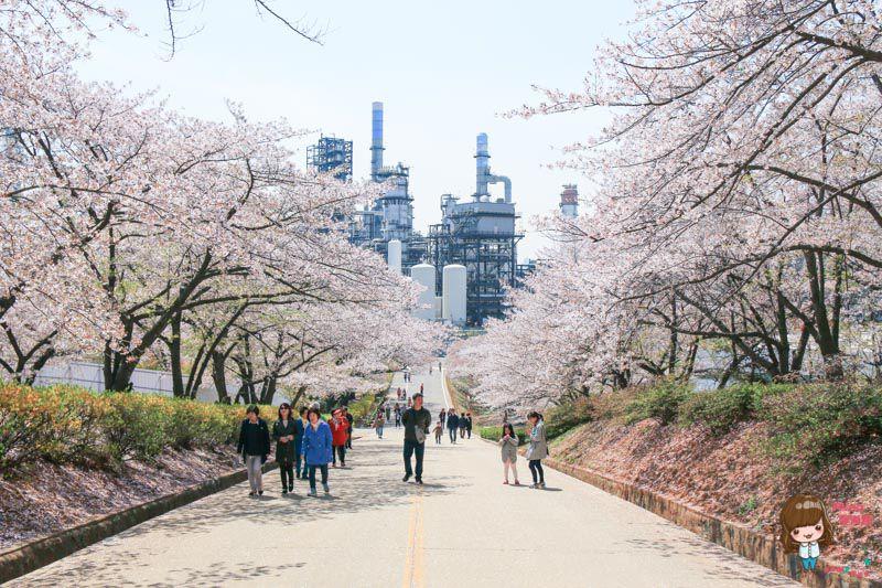 SK石油化學櫻花園