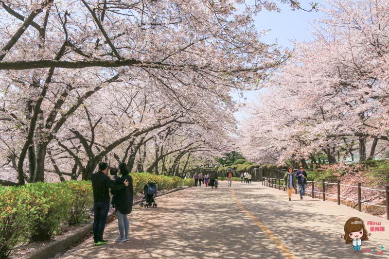 仁川SK石油化學櫻花公園