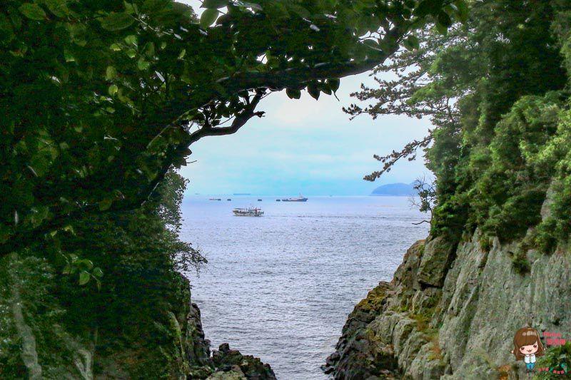 梧桐島風之谷-麗水景點